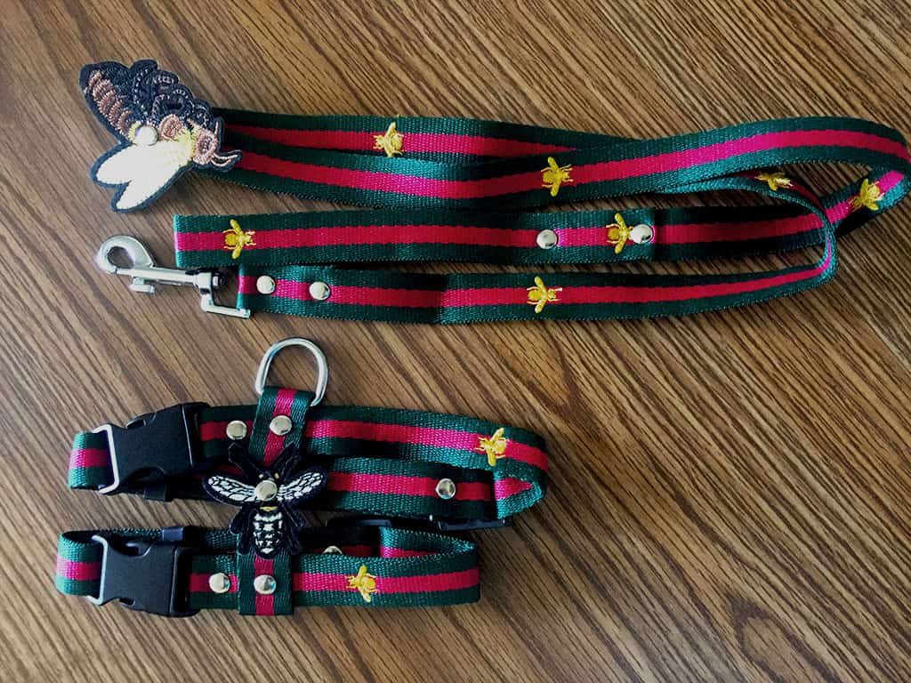 Unihubys brand strap type cat harness. The harness is shown with the leash above it. Both have a dark green color with a red strip going through the center. There are small yellow bee designs throughout it as well. On the leash, there is a bigger bee emblem attached to it.