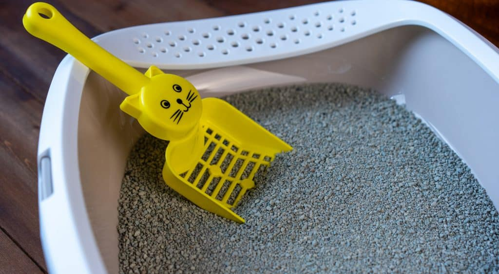 A white cat litter box filled with gray litter and a yellow scoop that has a cat face as a design