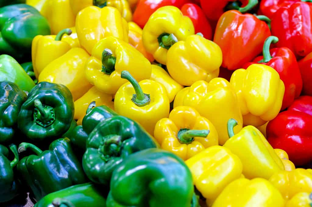 A bunch of green, yellow, and red bell peppers stacked neatly next to each other.