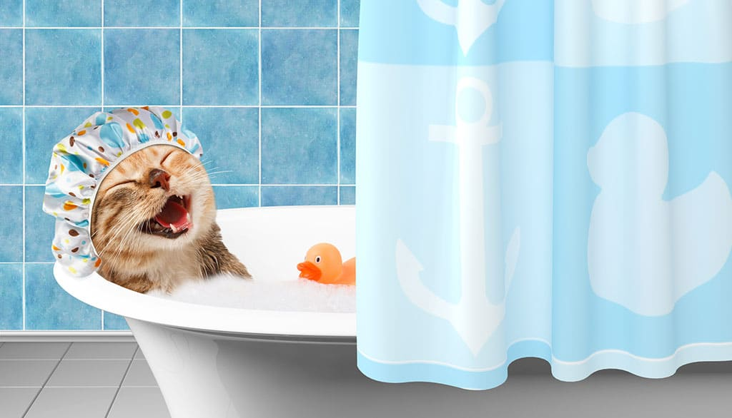 A smiling cat with a shower cap on, lying in a small bathtub with bubbles and a rubber duckie toy. There is a blue curtain drawn halfway covering the right half of the bathtub.