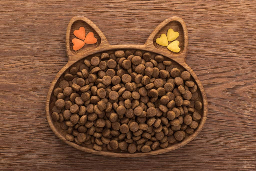 A cat face shaped bowl that has cat food in it (3 different colors: orange, yellow, and brown).