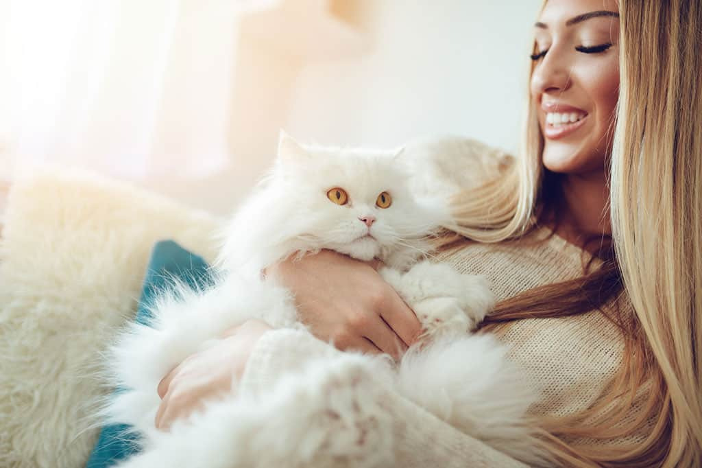 A fluffy, white Persian cat being held by a woman in her arms.